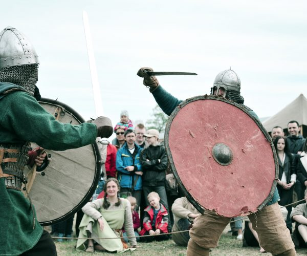 war-man-warrior-fight-vikings_t20_a8ZV9p